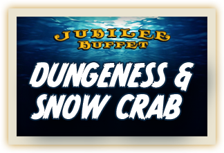 DungenessSnow_a